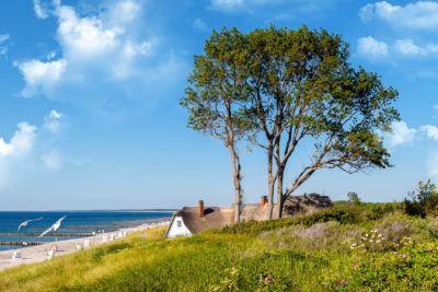 Favorent - Wir verwalten Ihre Ferienhaus in Ahrenshoop